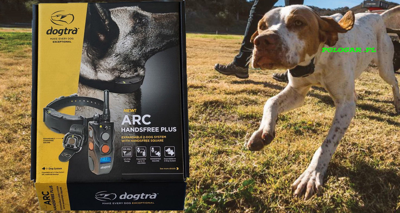DOGTRA ARC HANDS FREE PLUS do tresury psa